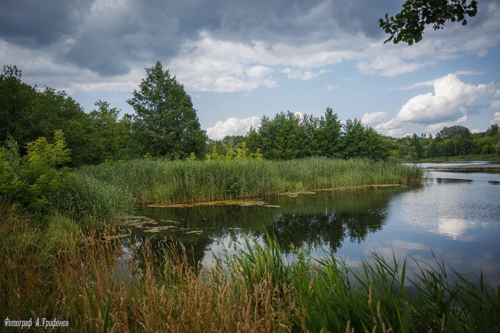 Июльский день 2015 года. Река Колпь, посёлок Красная Горбатка, Владимирская область.