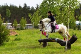 Майские соревнования на лошадях в Киржачском районе