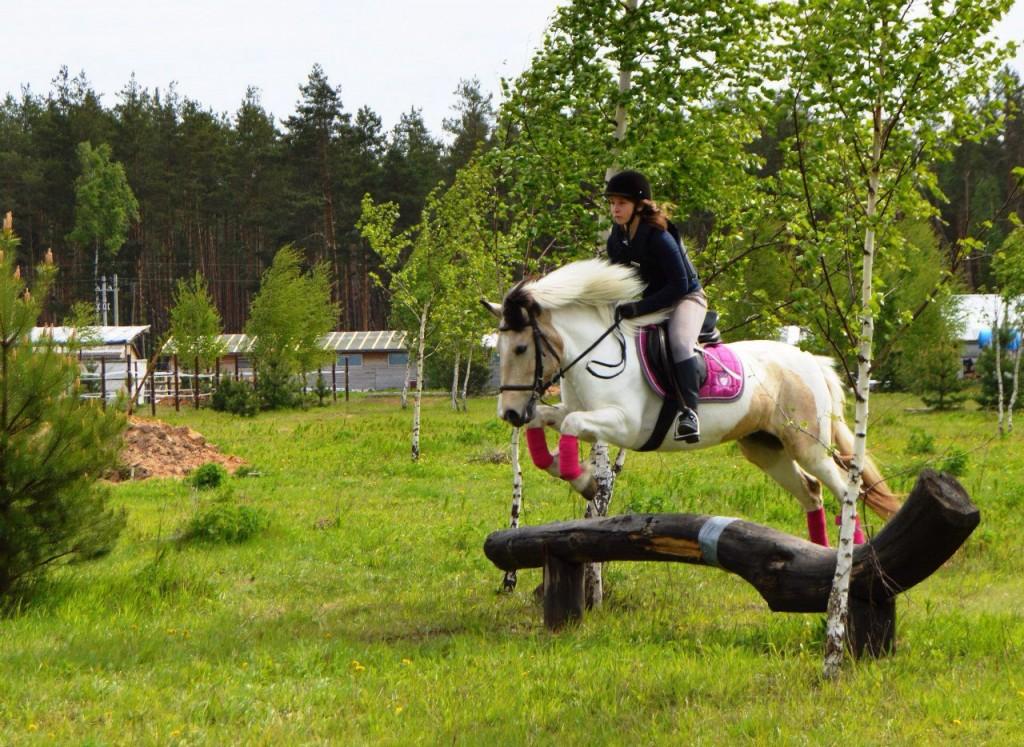 Майские соревнования на лошадях в Киржачском районе 01