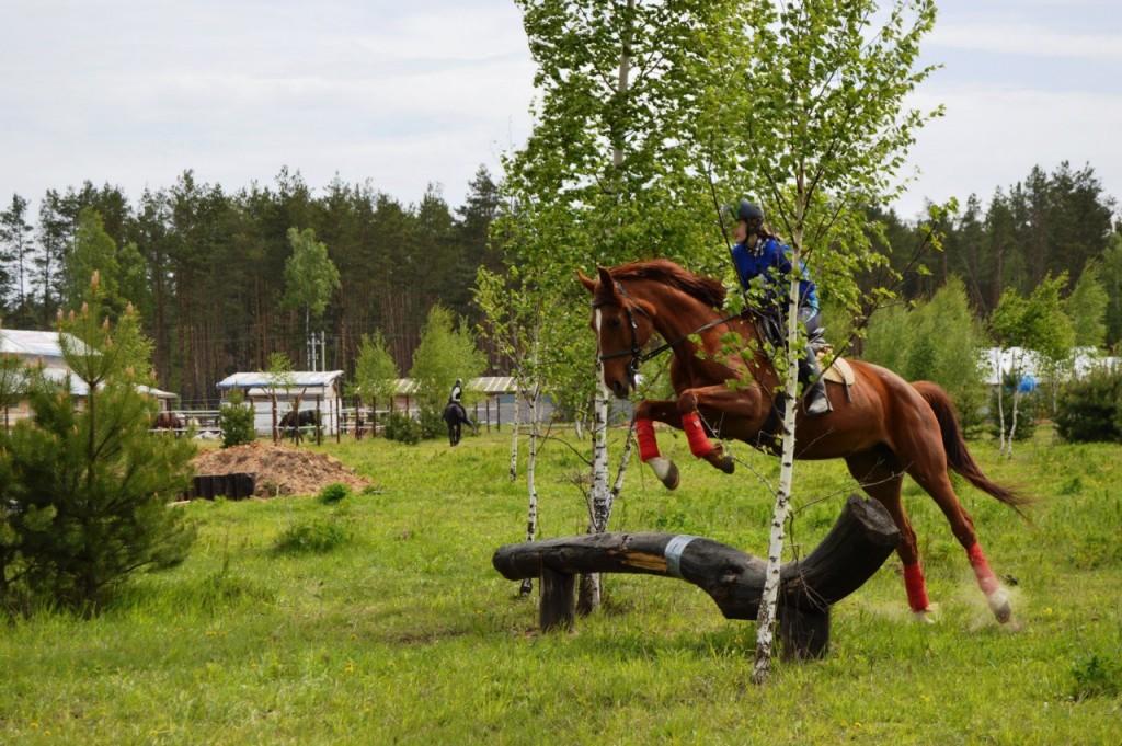 Майские соревнования на лошадях в Киржачском районе 02