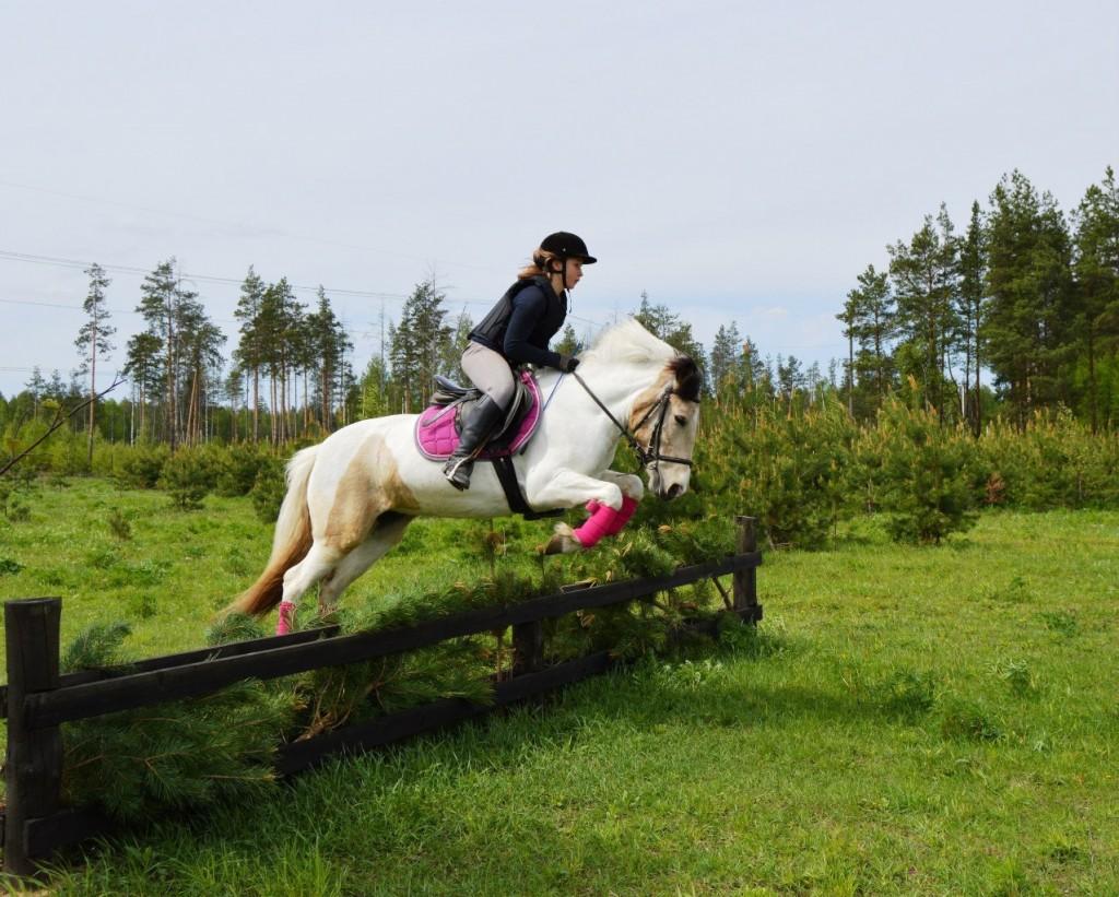 Майские соревнования на лошадях в Киржачском районе 03