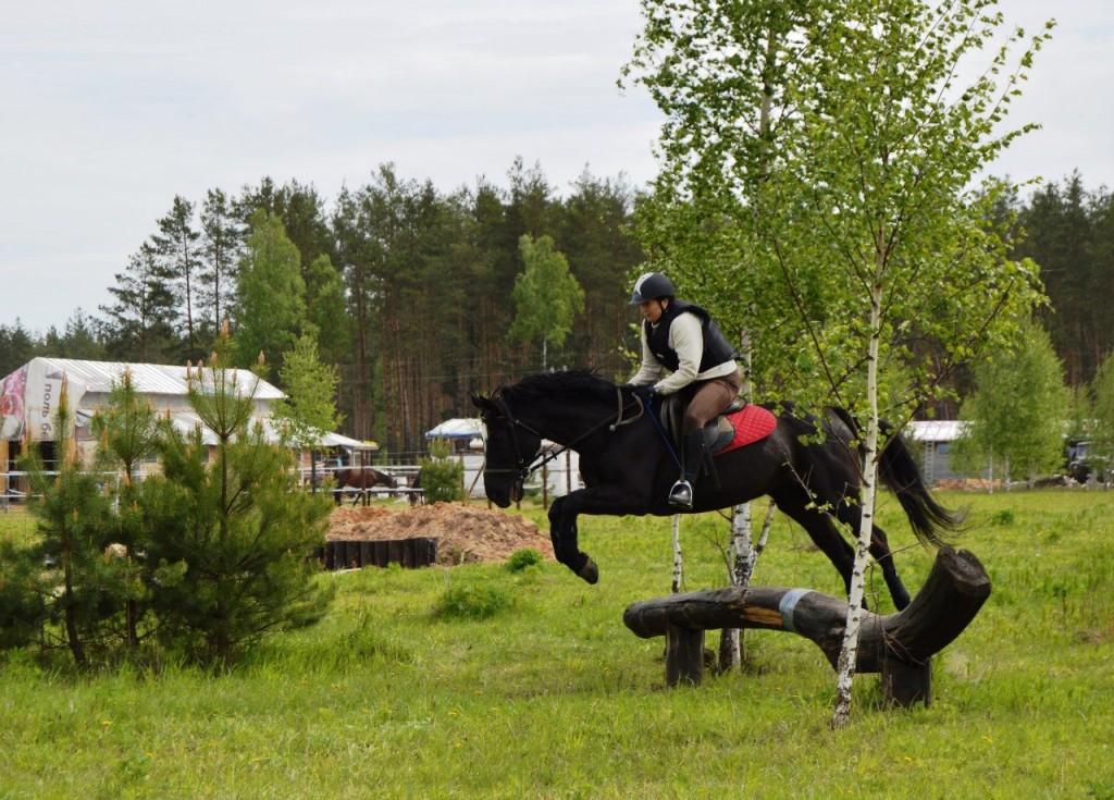 Майские соревнования на лошадях в Киржачском районе 04
