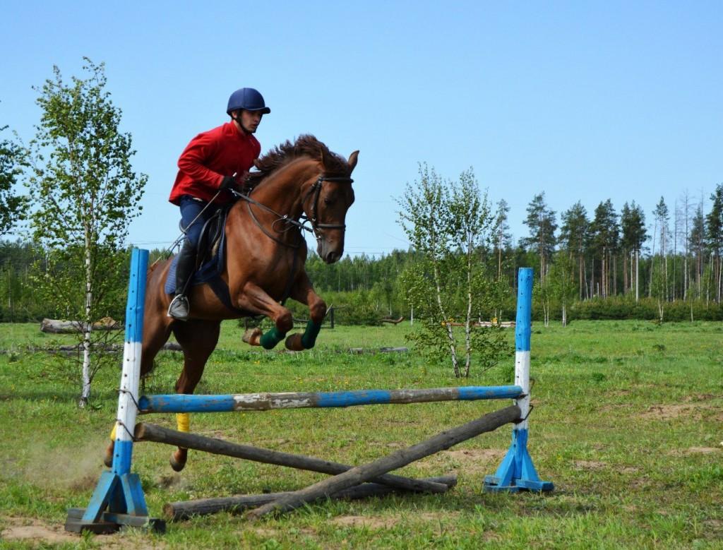 Майские соревнования на лошадях в Киржачском районе 05