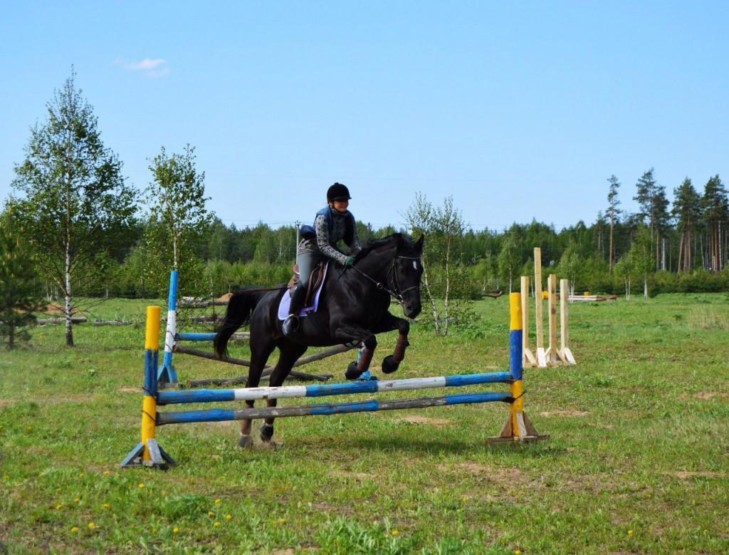 Майские соревнования на лошадях в Киржачском районе 06
