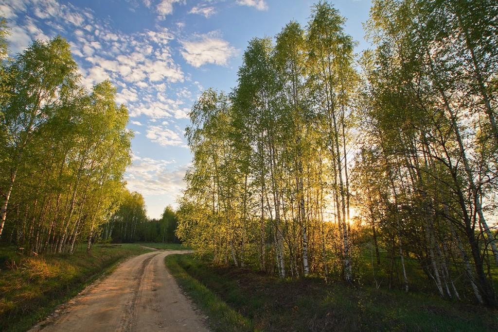 Май во Владимирской деревне 001