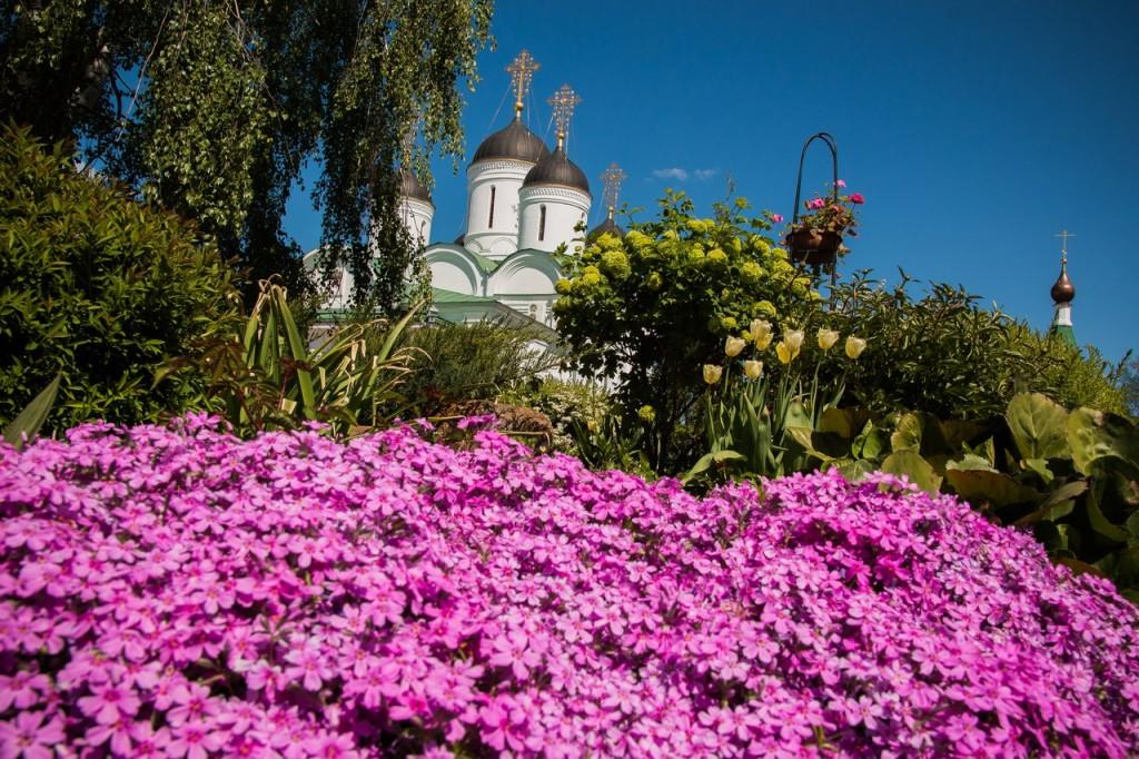 Май в Муроме. Спасо-Преображенский монастырь 10