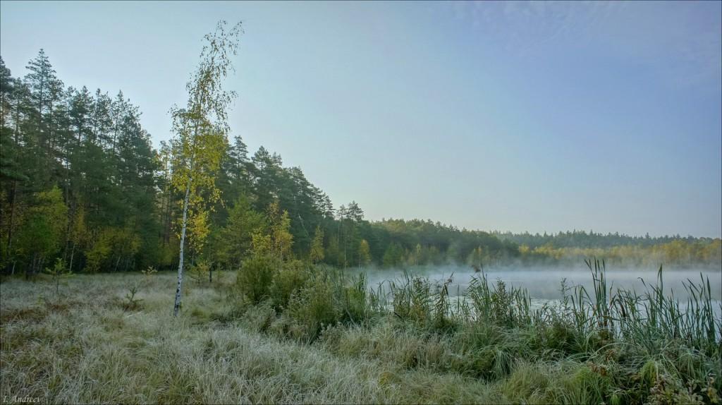 Озеро Свято Камешковский район