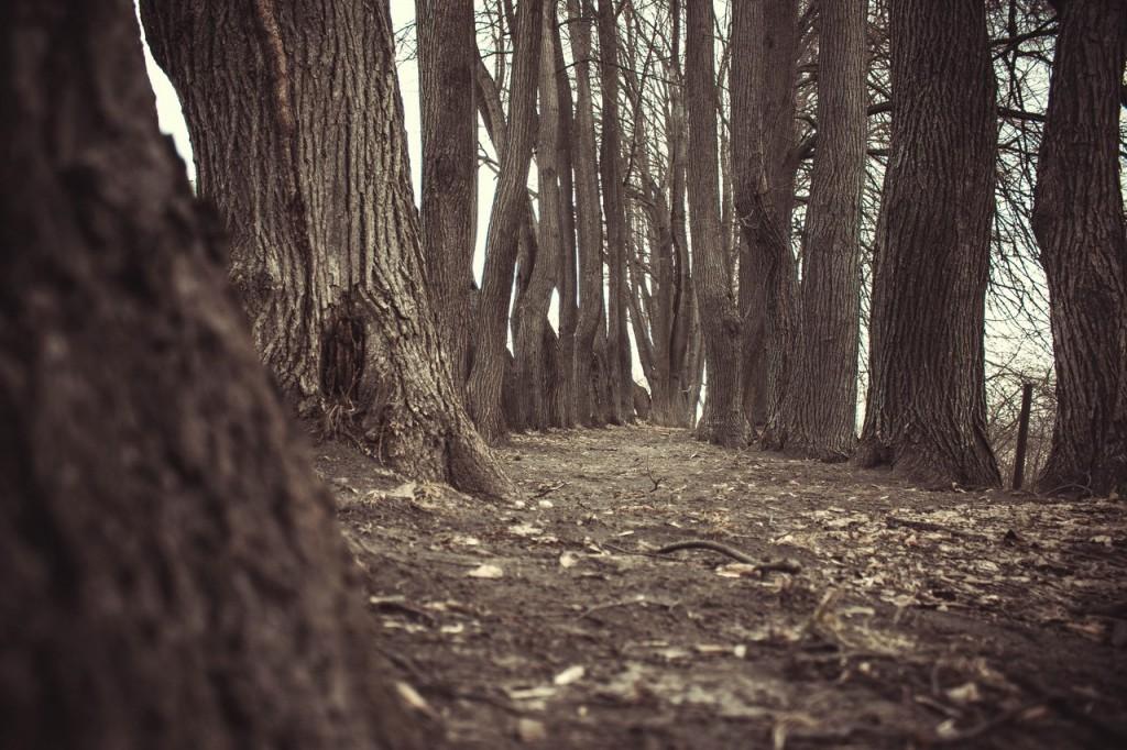 Прогулка в Муроме возле Оки 01