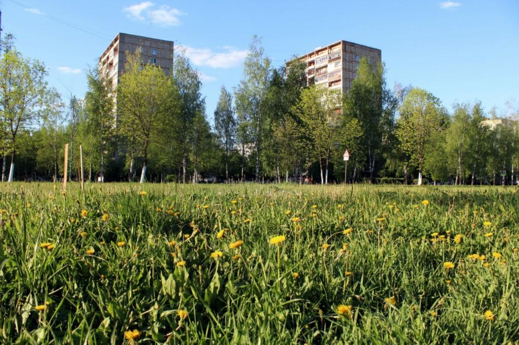 Радужный - город, укутанный в листву 16