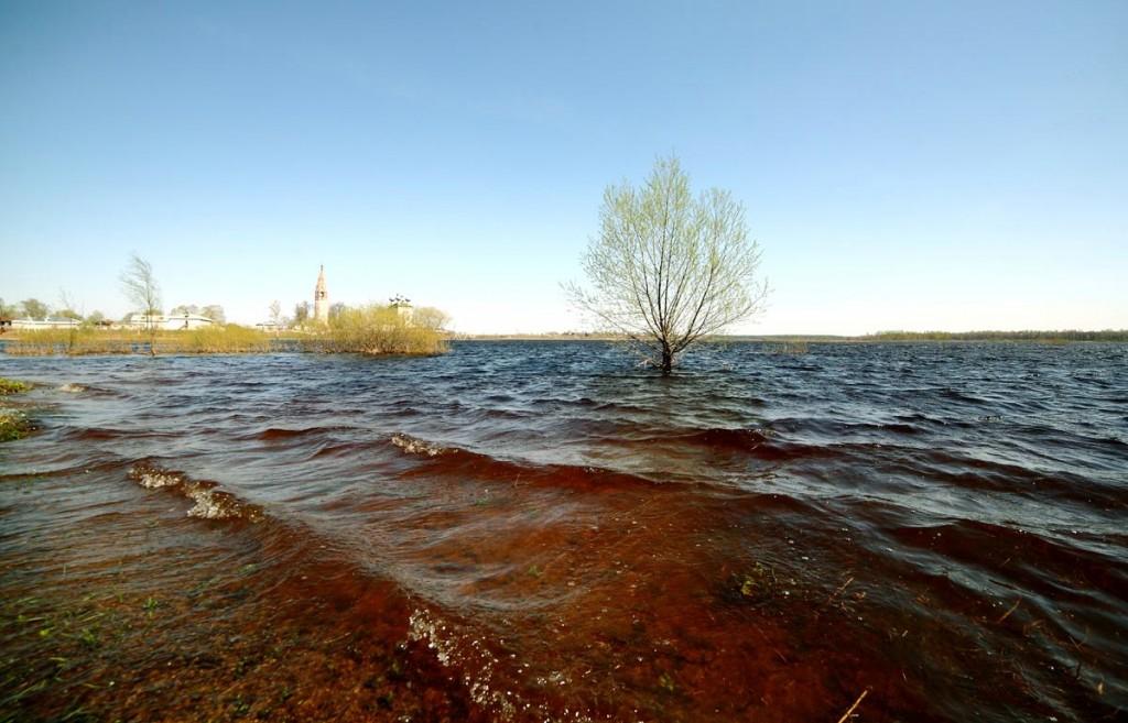 Разлив реки Уводь в селе Большие Всегодичи Ковровского района