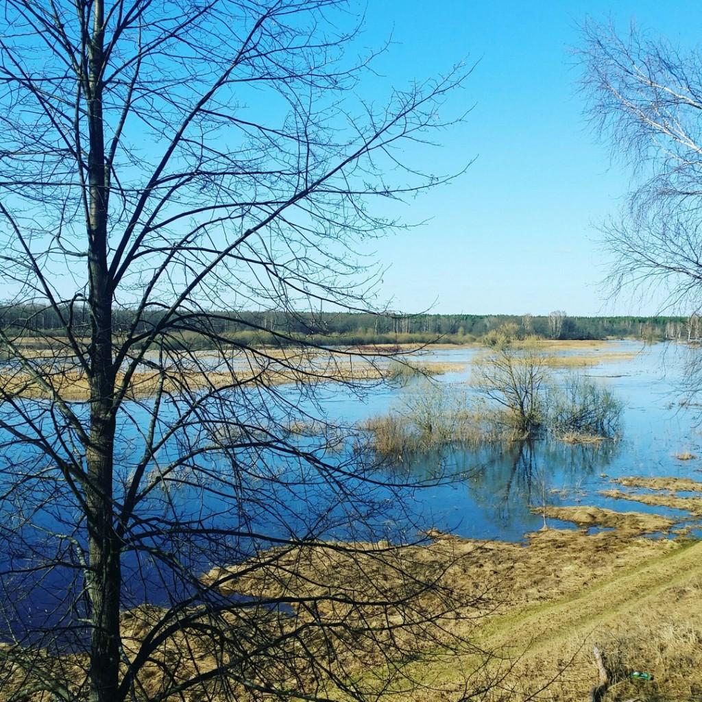 Разлив реки Уводь. Село Малышево Ковровского района 01