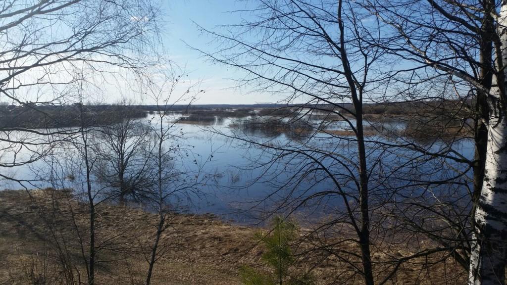 Разлив реки Уводь. Село Малышево Ковровского района 02