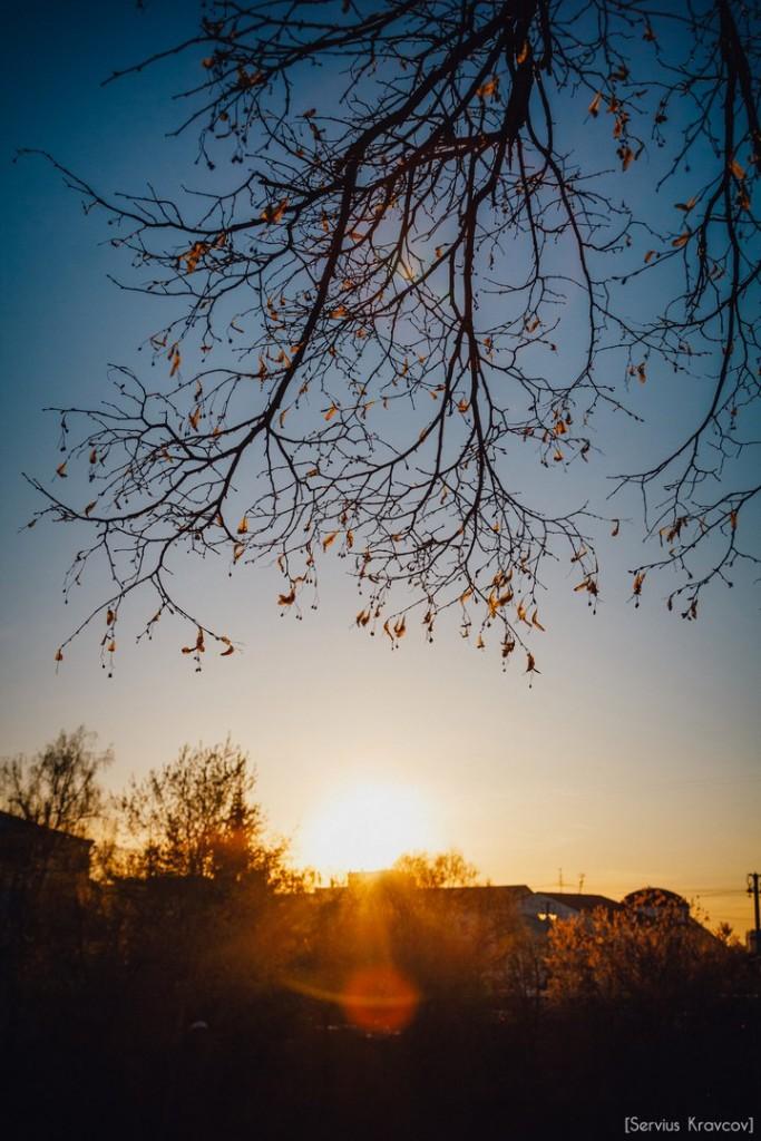 Расцветающий парк Пушкина в лучах апрельского заката 01