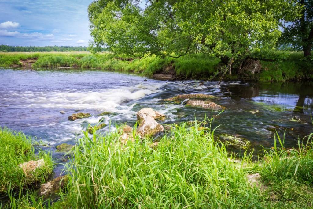Река Судогда 01