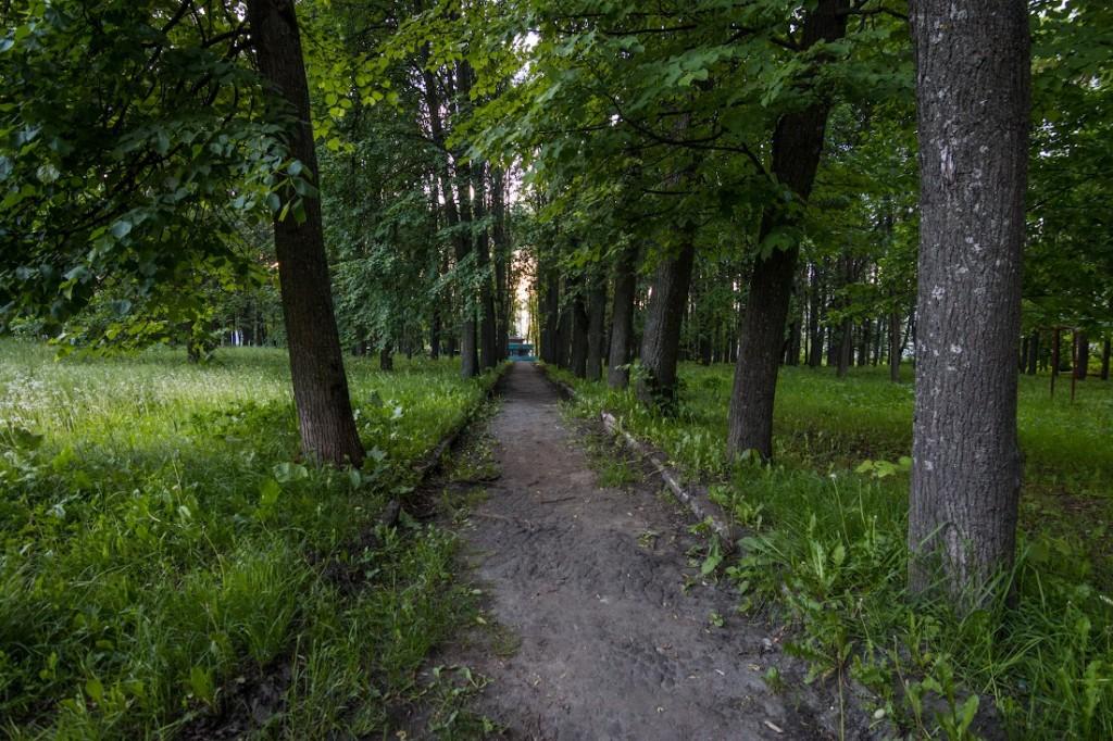 Вопрос восстановления парка на ул. Горького 02