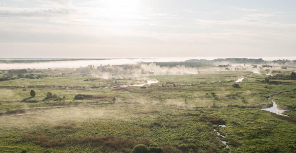 Ковровский р-н, Туманное утро 02