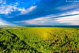 Муромские леса, Вербовский микрорайон