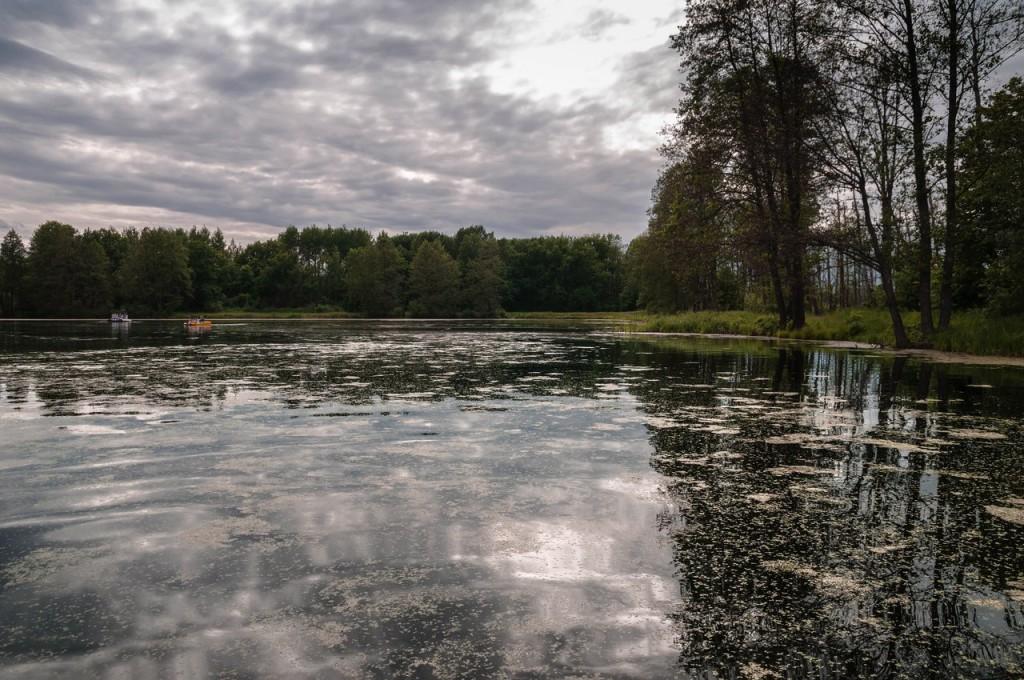 В Загородном парке Владимира летом 02
