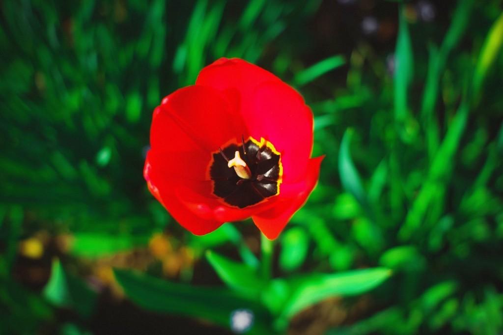 Весна в городе-на-Оке 01