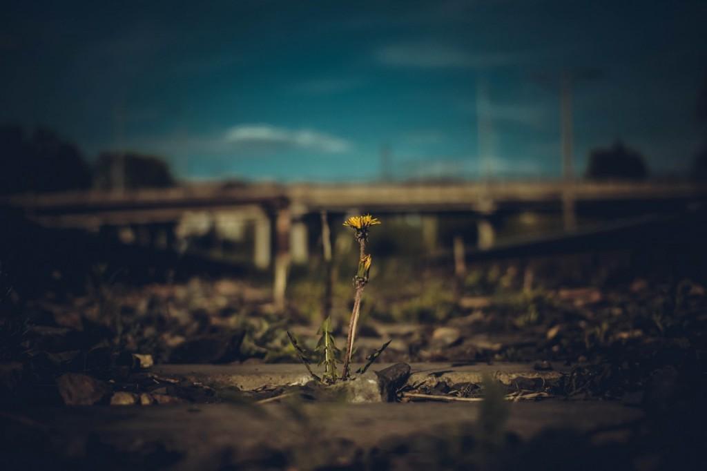 Весна в городе-на-Оке 09