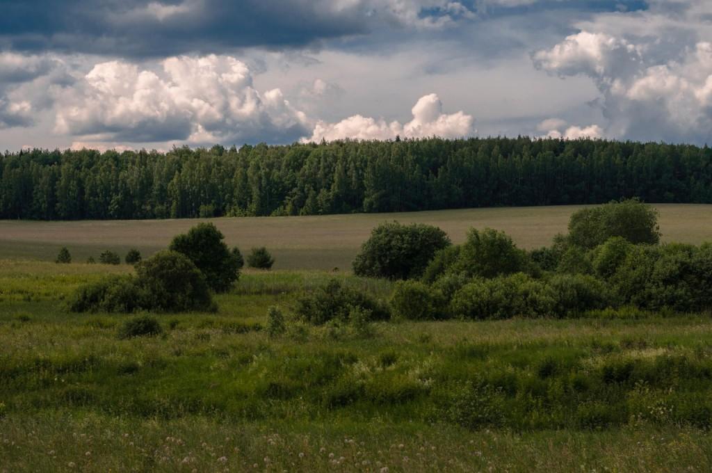 Владимирщина деревня и природа 08