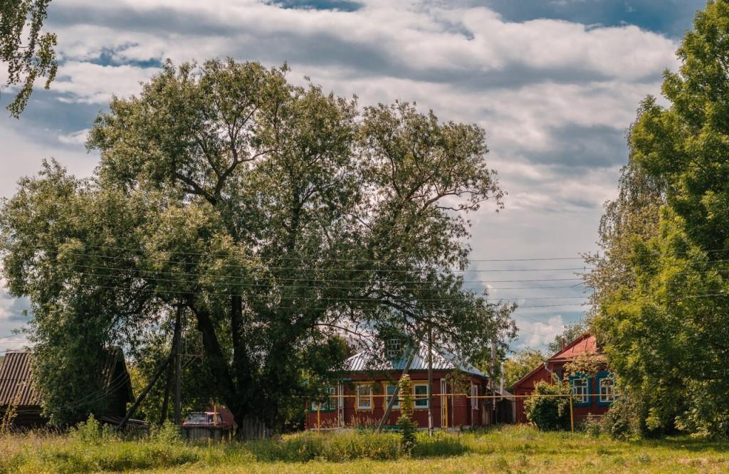 Владимирщина деревня и природа 09