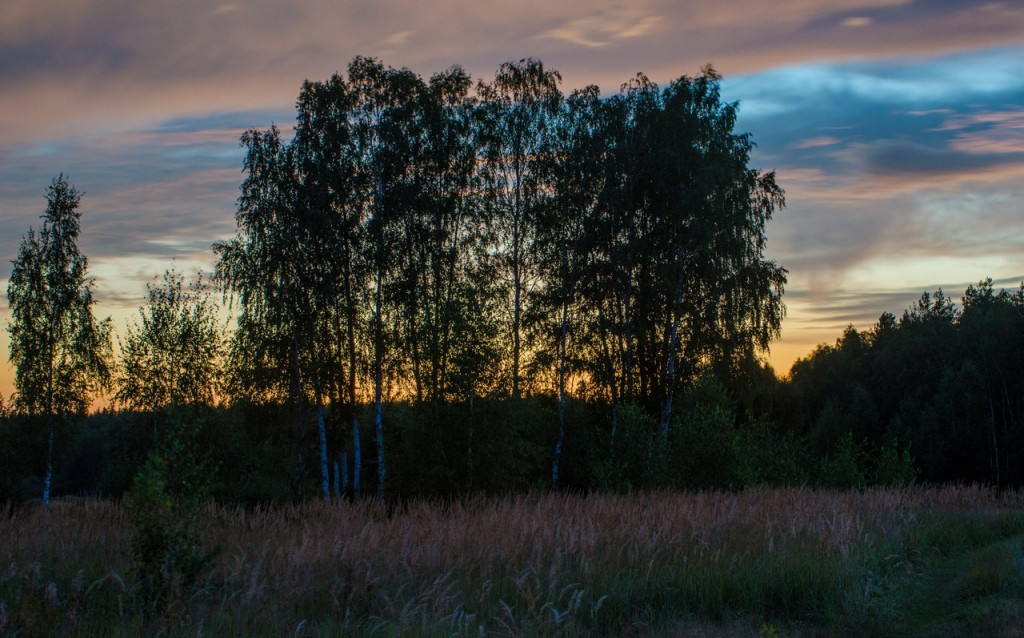 Деревня Воскресенье Петушинского района 05