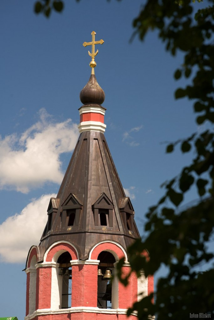 Купола храмов в Суздале 03