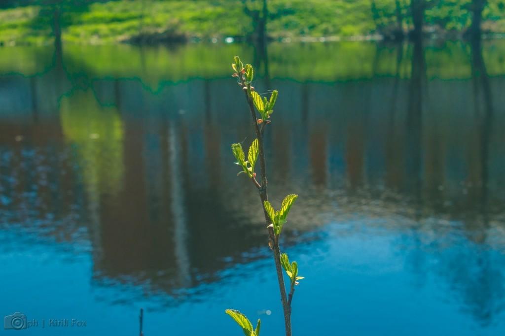 Меленки, на реке Унжа 03