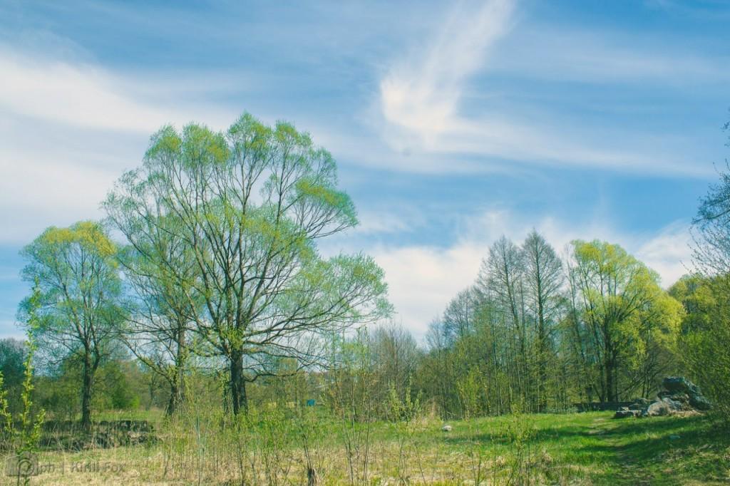 Меленки, на реке Унжа 04
