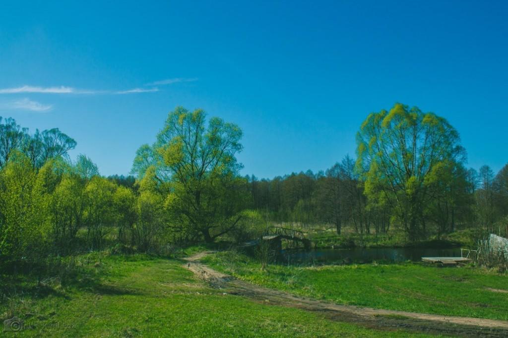 Природа города Меленки 05