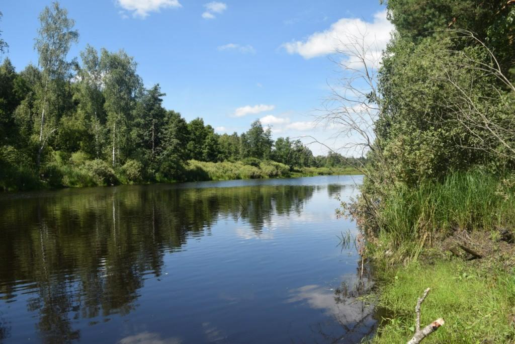 Речка Поль в Гусь-Хрустальном районе