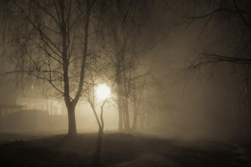 Туманный Джедай в Муроме (весна 2015) 01
