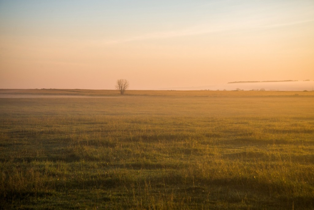 Утренний рассвет во Владимирской области 08