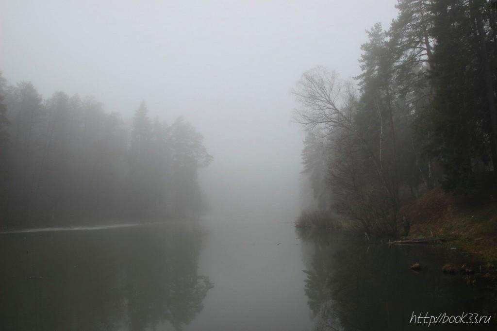 Вербовский в тумане 01