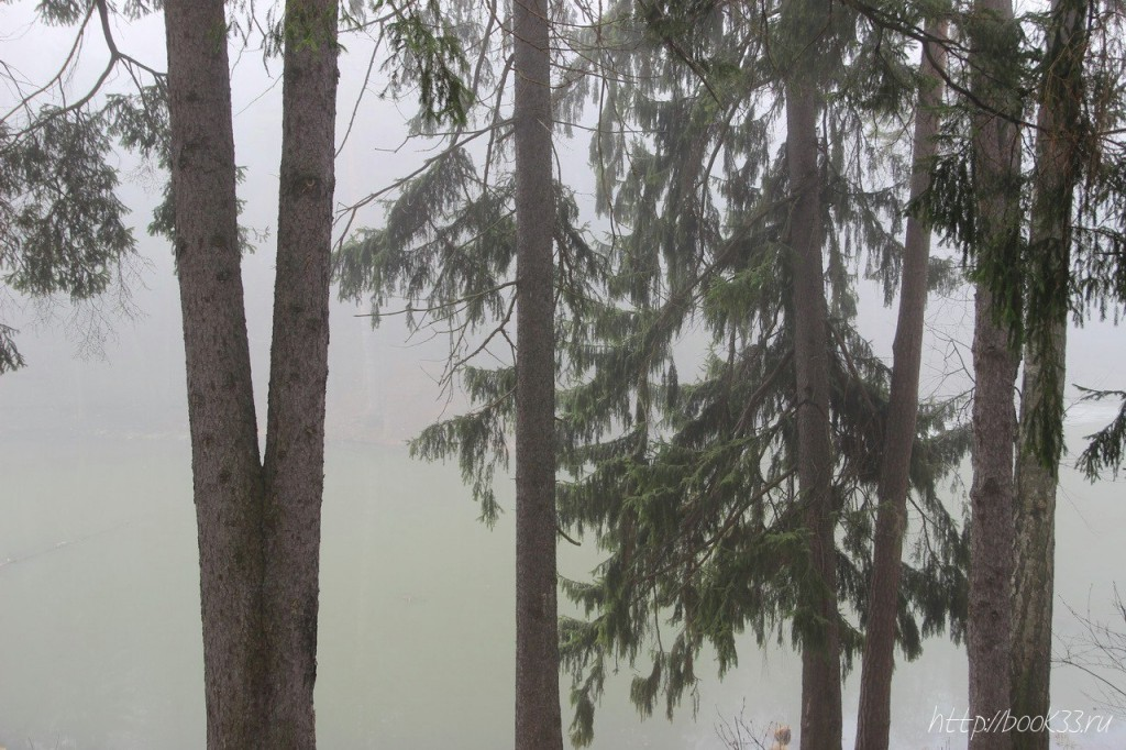 Вербовский в тумане 04