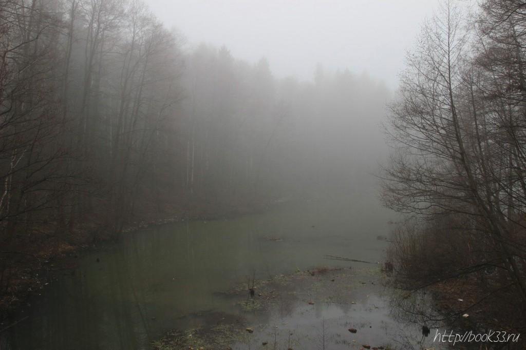 Вербовский в тумане 07