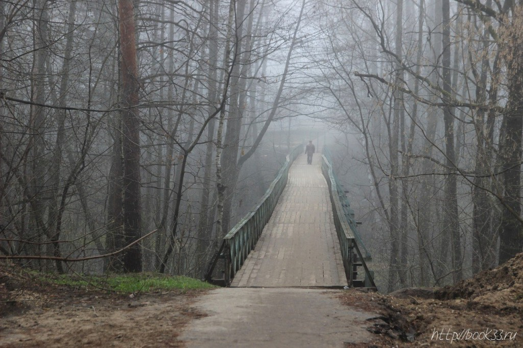 Вербовский в тумане 08