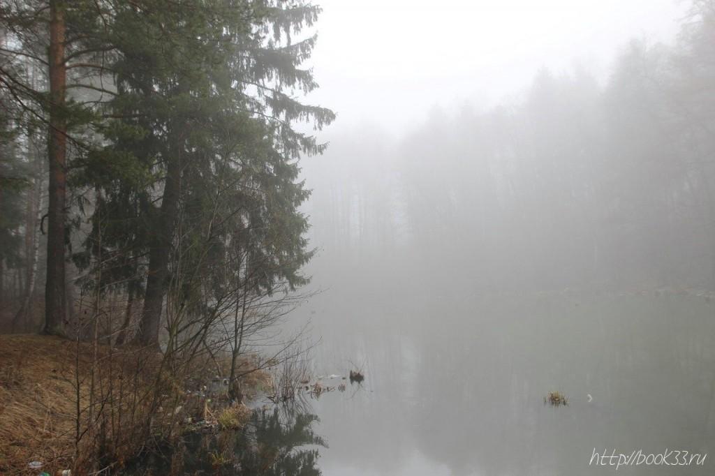 Вербовский в тумане 09