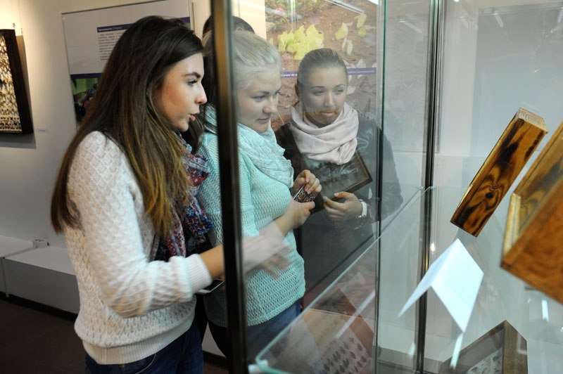 В Музее природы открылась выставка «Рождённые летать» 02
