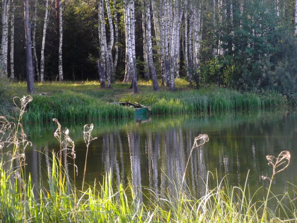 Озеро Вышманово, Собинский район 01