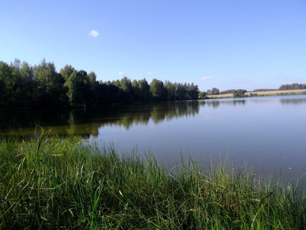 Озеро Вышманово, Собинский район 02