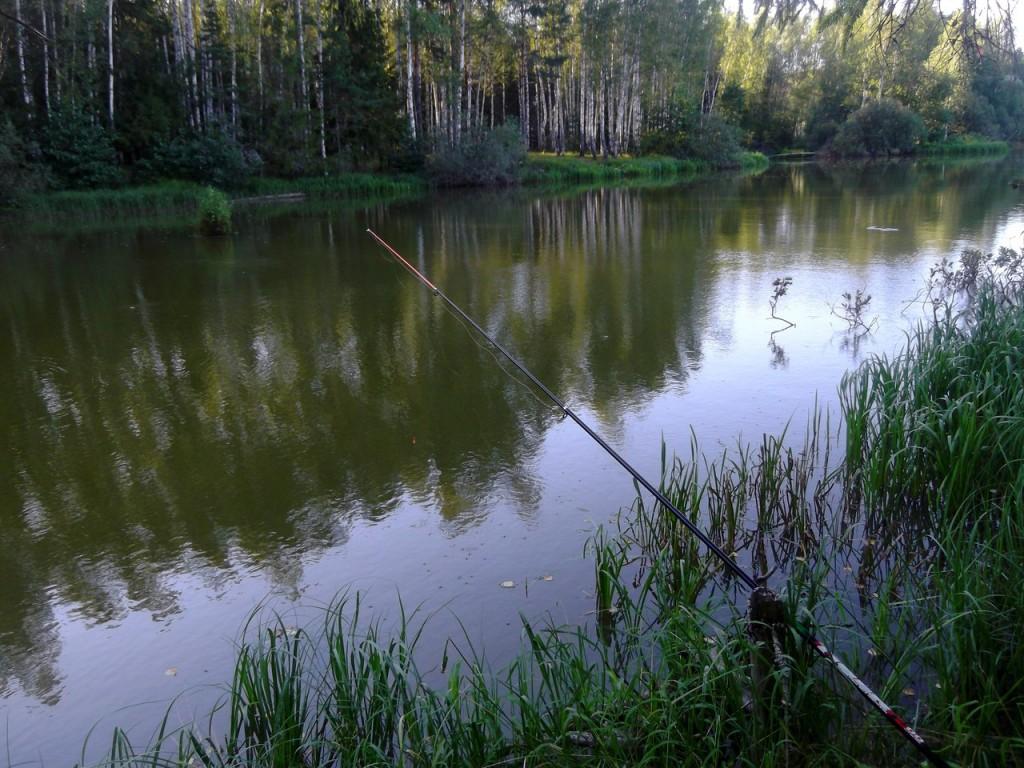 Озеро Вышманово, Собинский район 04