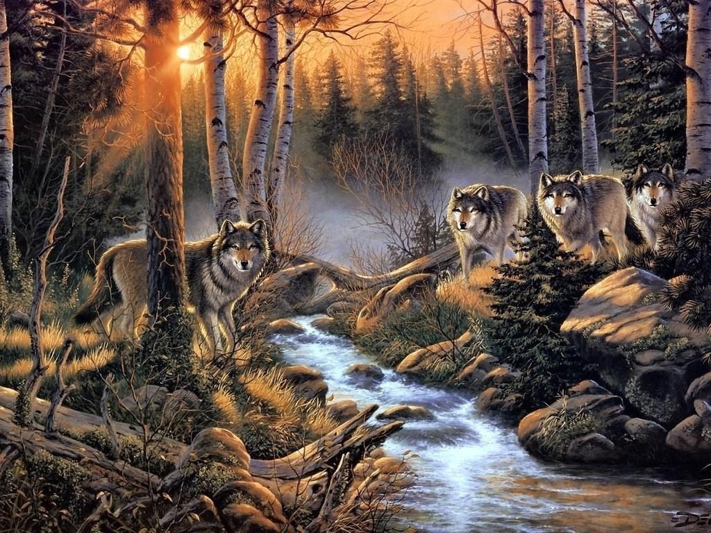 Стая волков. Случай в Юрьев-Польском районе