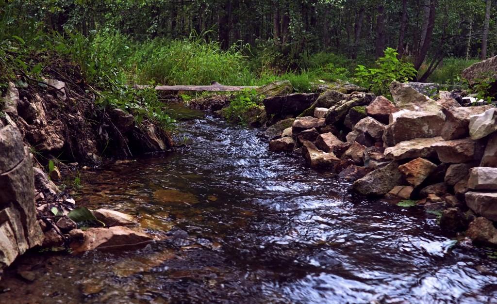 30 августа, поселок Мелехово, река Нерехта 01