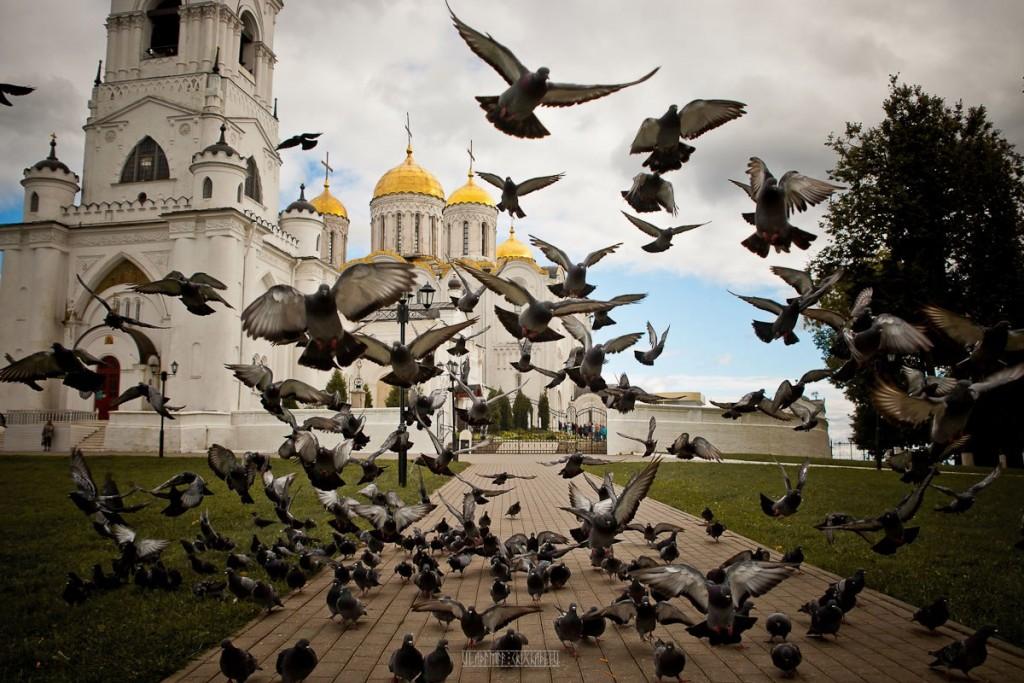 31 августа во Владимире 04