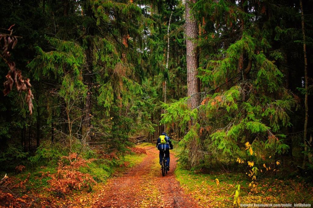 Велопоход в Покровские леса 06