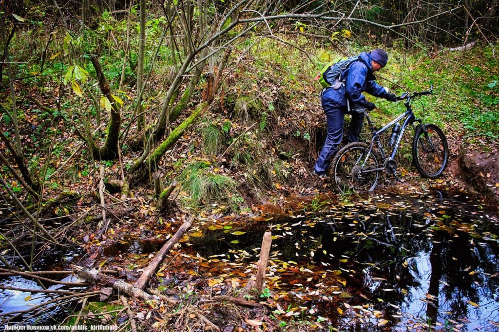 Велопоход в Покровские леса 10