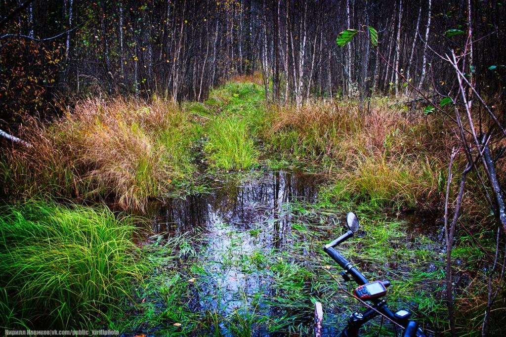 Велопоход в Покровские леса 13