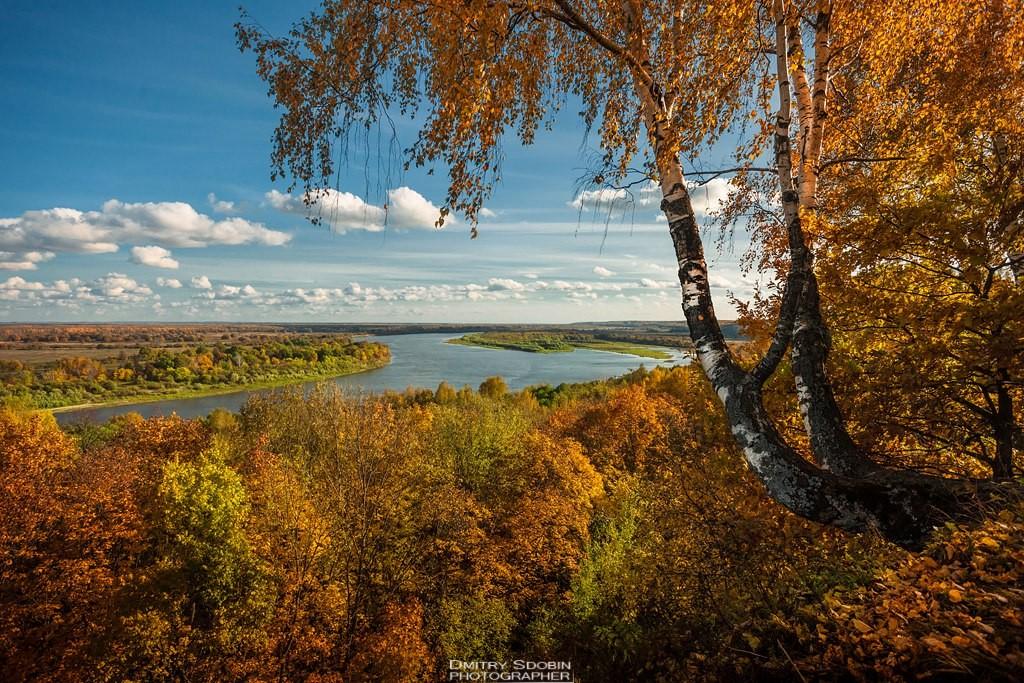 Владимирская область, Меленковский район, с. Окшово
